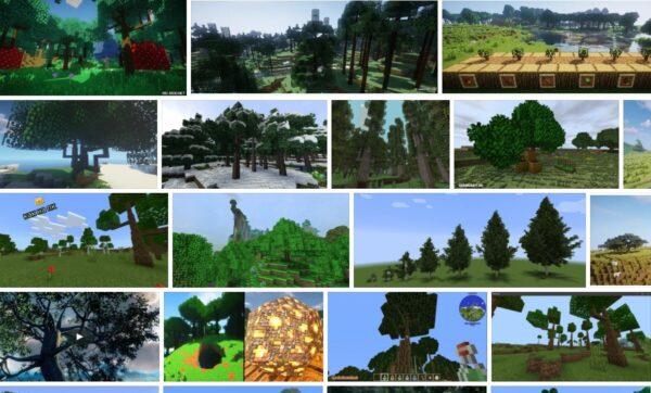 Dynamic Trees - Mods - Minecraft
