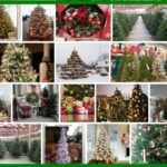 Costco Christmas Trees, Big Discount !!! For Sale 2021