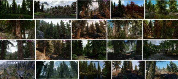 Enhanced Vanilla Trees, Skyrim Special 2021