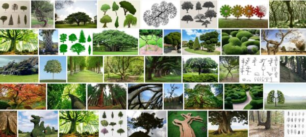 J Shaped Trees, 43+ Warning Signs From Nature